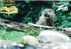 Potter Park Zoo Pass